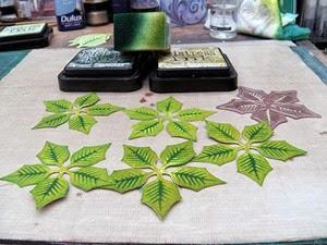 PoinsettiaBox15