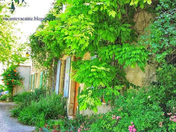 drome provencal2.jpg