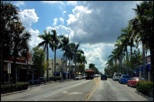 16 - Driving through Royal Palm lined streets of Homestead