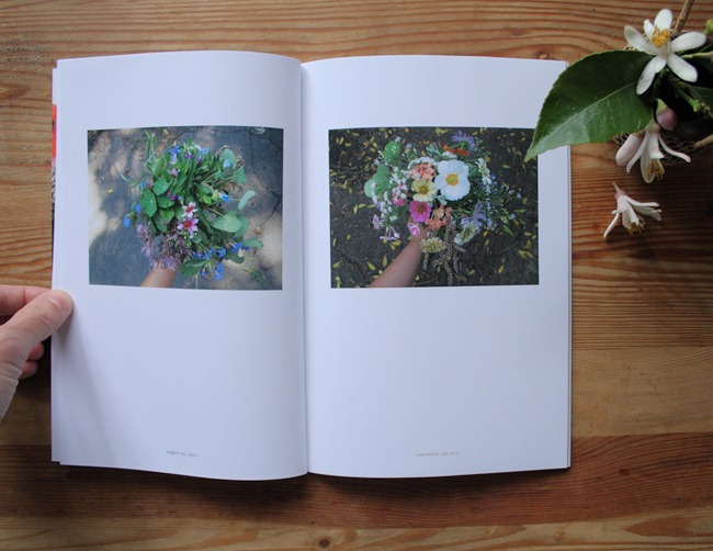 Jaime Rugh - Backyard Flowers Book 3