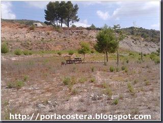 area parc llobero (4)
