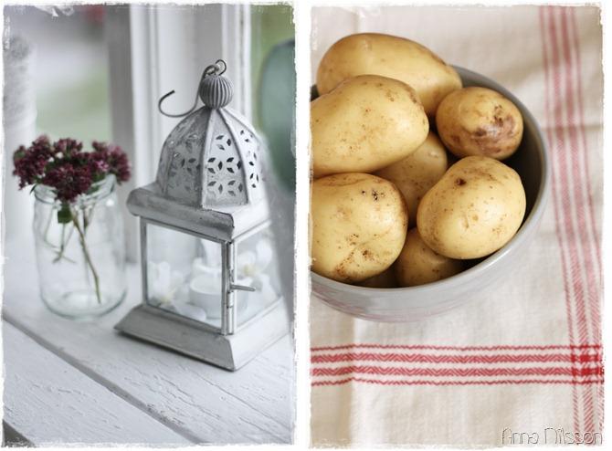potatis och lykta