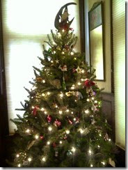 Xmas Tree - for the blog