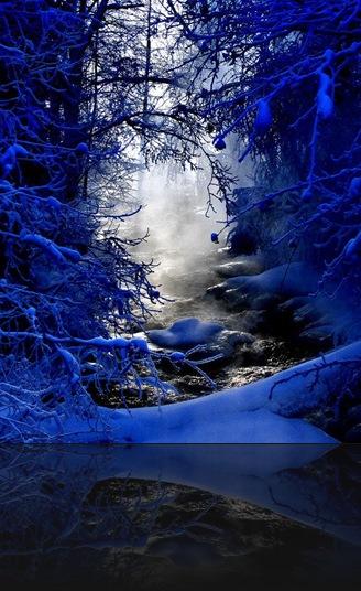 bluewhite
