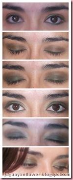 110616 - Smokey Eyes (1)