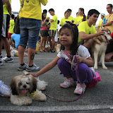 Pet Express Doggie Run 2012 Philippines. Jpg (24).JPG