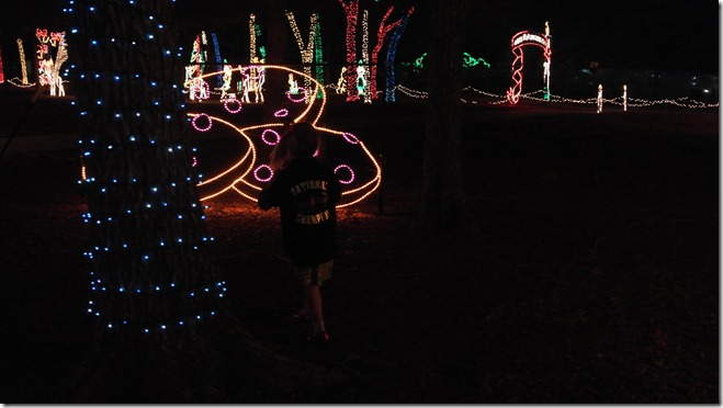 Prairie Lights 137