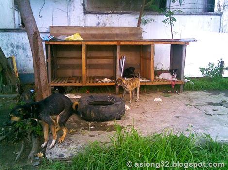 05262011(006)bnhg