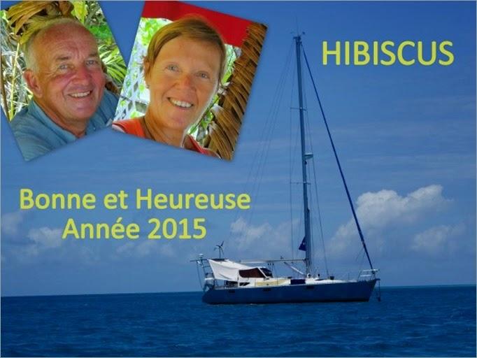 Voeux 2015 Hibiscus