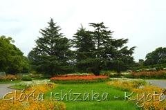 Glória Ishizaka -   Kyoto Botanical Garden 2012 - 140