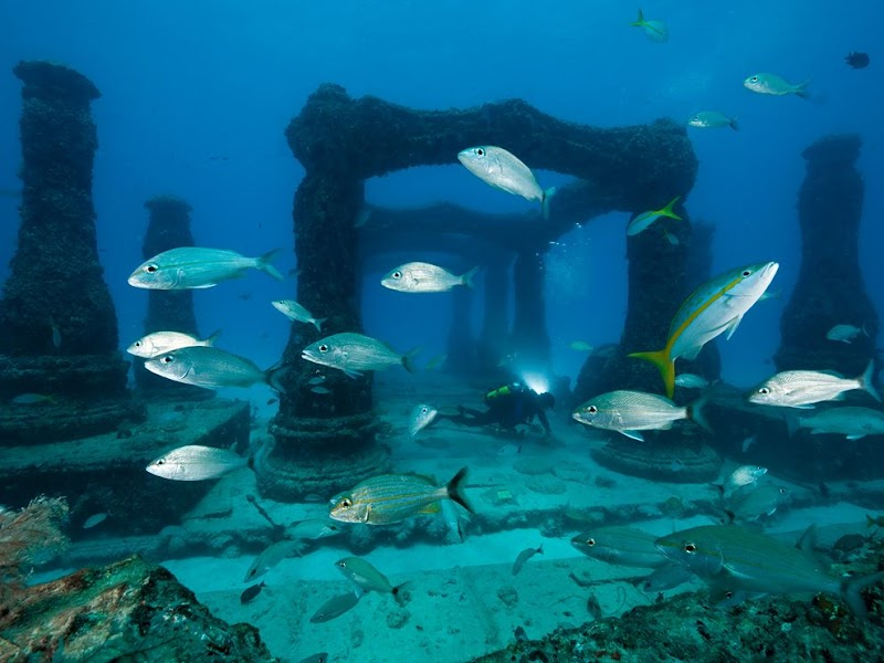 neptune-memorial-reef-cemetery_37921_990x742.jpg