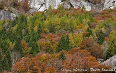 11-2014-11-01_Val di Mello (58)