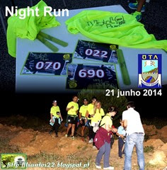 Night Run - Ota - 2014 (Copy)