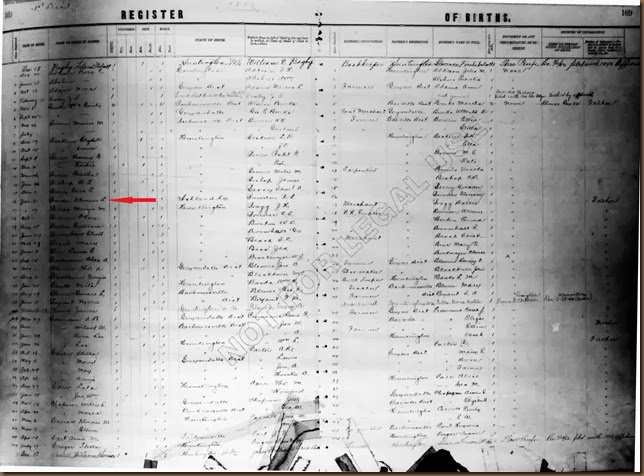 BOWDEN_Florence_Register of Birth_31 Jan 1888 from AshlandKY