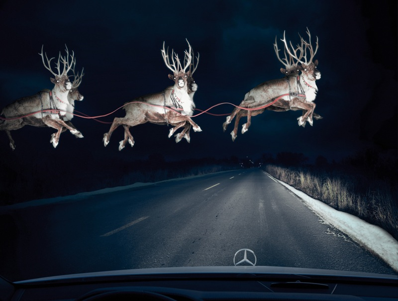 Mercedes reindeer in headlights