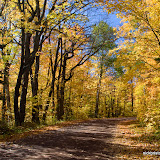 Fall Color Tour / Close to Lake Superior / Northern Minnesota