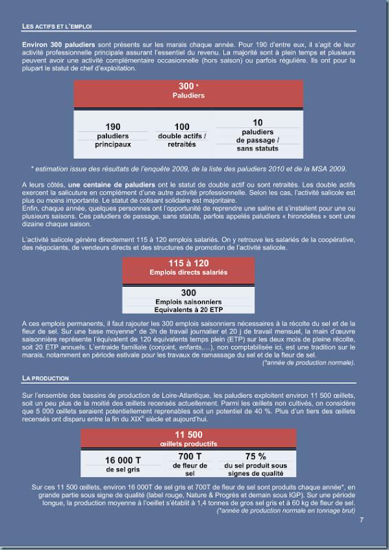 diagnostic_salicole_ca44_2011_page_008