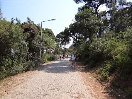 26. Drumul spre manastire.JPG