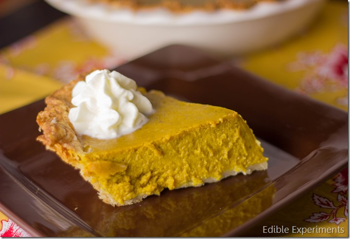 Buttercup Squash Pie (1 of 1)
