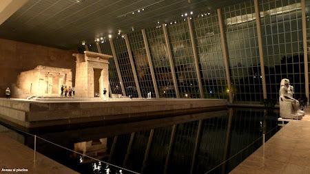 Museum of Metropolitan Art