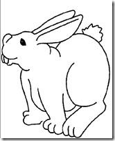 conejos pascua  (17)