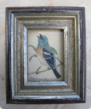 wc-lazuli-bunting