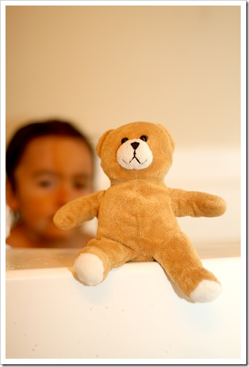 little teddy IMG_4376
