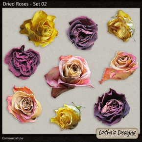 lth_cu_driedroses_02