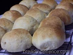 orange-buttermilk-dinner-rolls 021
