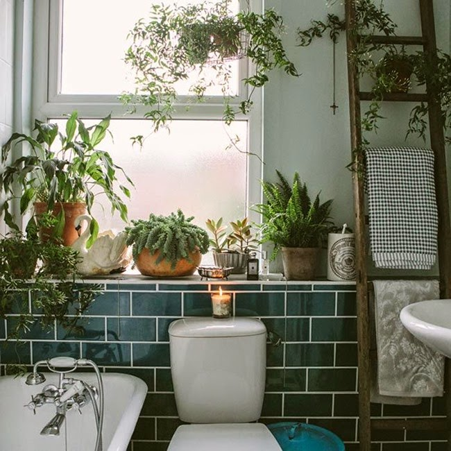 Simona elle le piante invadono gli interni e nasce il - Piante in bagno ...