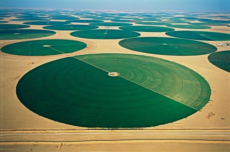 wadi-rum-farming-1