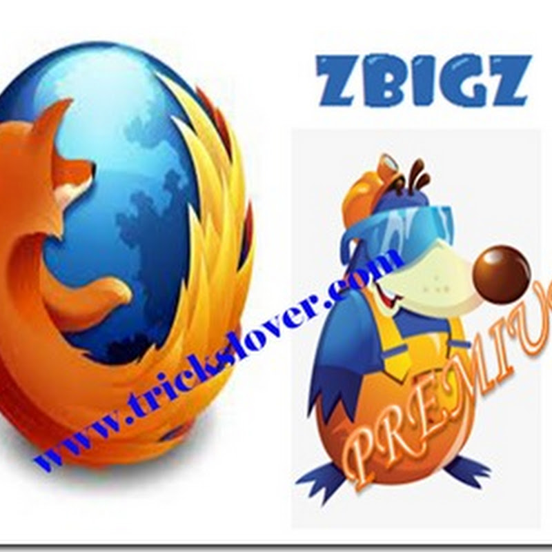 How to use zbigz premium cookie in mozilla firefox