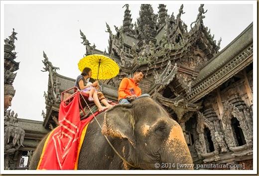 Pattaya-03097
