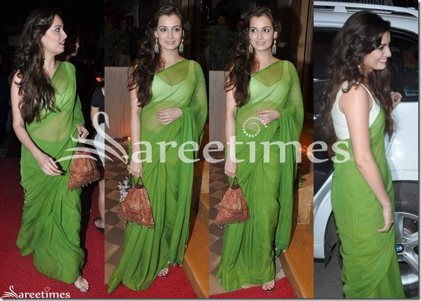Dia_Mirza_Green_Saree