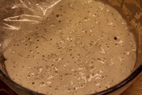 restarting-dried-sourdough00003