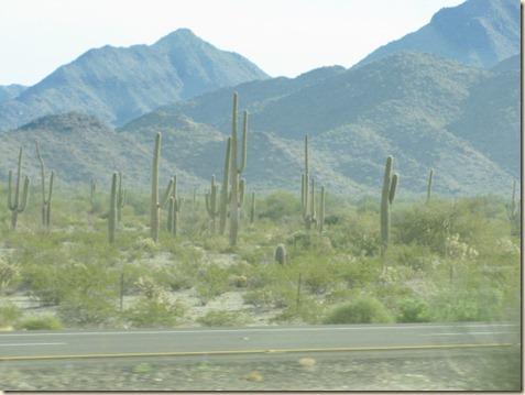 Yuma to Tucson 008