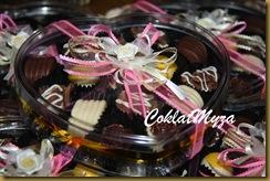 Coklat Myza 011