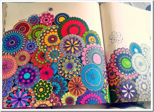 ideias para pintar livro jardim secretoperfeito pra mim que não para