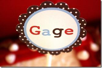 GAGE-10-8-11 095