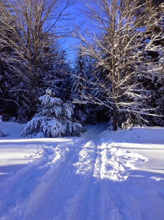winter_2015_lr