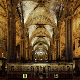 Catedral de Barclona by Rudolf Moerkl - Buildings & Architecture Places of Worship