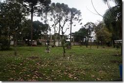 CCB-PR03 – Curitiba 3