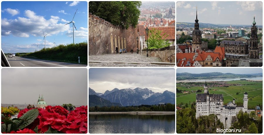 Европа 2014.jpg