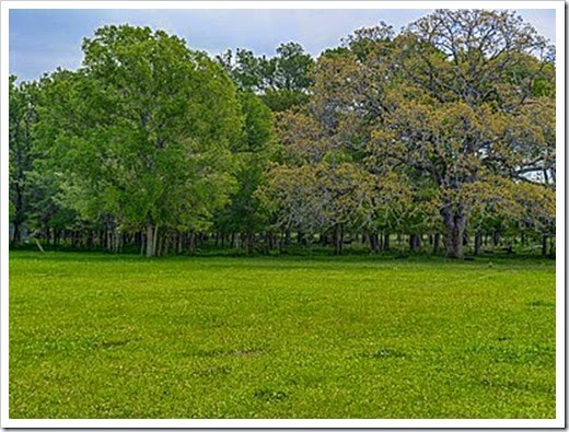 Caldwell land