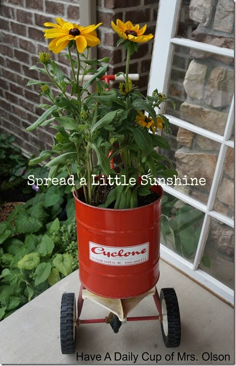 Spreader with Rudbeckias