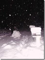 snowpocalypse  11