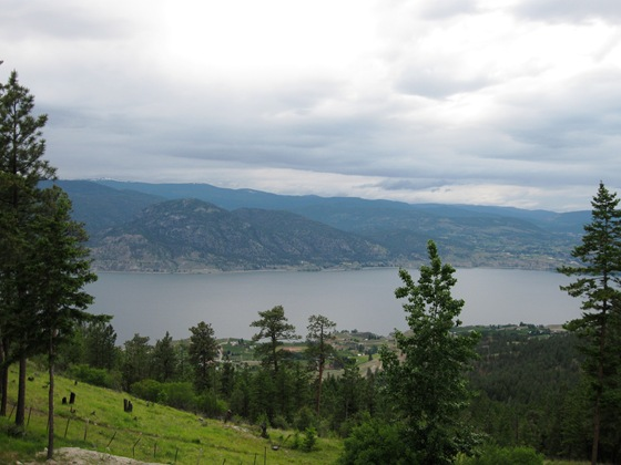 Okanagan Lake View From Crooked Tree