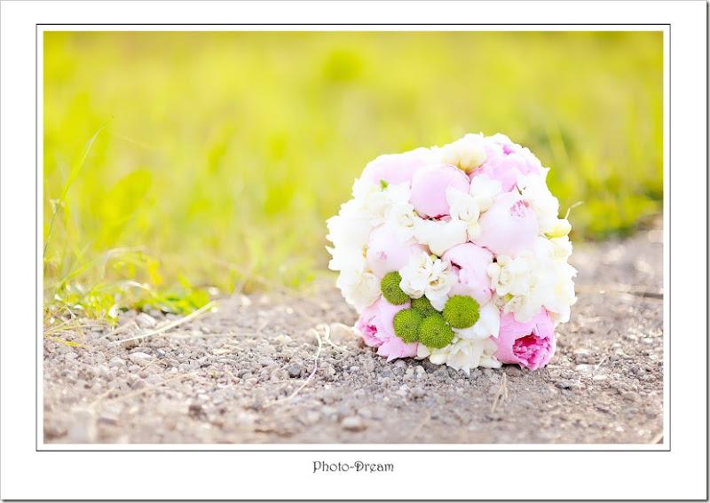 Photo-Dream_71