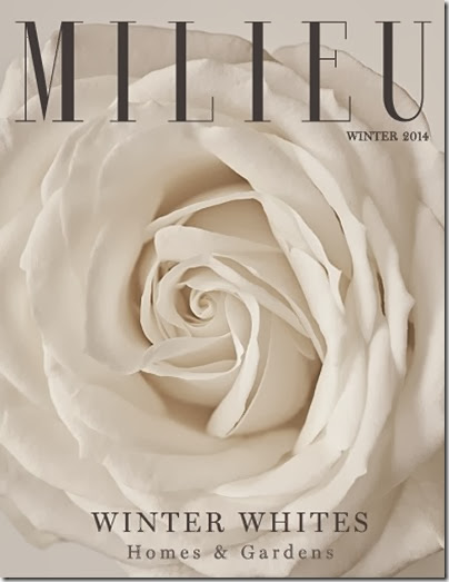Cover Milieu winter 2014