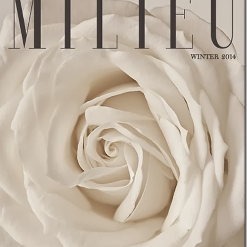 MILIEU Winter Issue